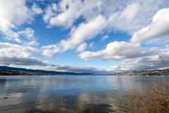Lake Zurich (Bephep2010) Tags: 2018 7markiii alpha au auzh herbst himmel ilce7m3 lakezurich sel1635z schweiz see sony switzerland wolken zurich zürich autumn clouds fall lake sky ⍺7iii kantonzürich ch
