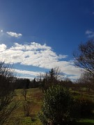 Ciel cagnottais. (Marie-Hélène Cingal) Tags: cagnotte landes 40 ciel sky clouds nuages