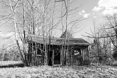 Done got old (Wicked Dark Photography) Tags: bw wisconsin abandoned autumn blackandwhite cabin decay derelict fall logcabin monochrome ruin rurual
