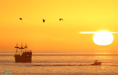 Pirates of the Sea (die Augen) Tags: sunset canon ls2 seascape boat pirate ship yellow sailing