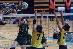 20180512_IMG_7356 (ko_en_volleyball_para) Tags: スポーツ sports バレーボール volleyball パラ para 聴覚障害 deaf the 18th national disabled competition hearing impaired area preliminary 2018 第18回 全国障害者スポーツ大会聴覚障害者バレーボール競技 地区予選大会 大田区体育館 otacity general gymnasium 栃木 tochigi 東京 tokyo