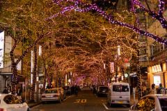 Illumination street (gemapozo) Tags: night illumination tokyo nihonbashi pentax japan k1mkii sakuradori 東京都 日本 jp hdpentaxdfa50mmf14sdmaw 夜景 イルミネーション 日本橋さくら通り