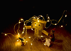 341/365 With a Little Help From My Friends (Helen Orozco) Tags: 341365 2018365 danbo danbosdog teddybear naughtyelf raw hohoho festivefun christmas toy friends lights tangle