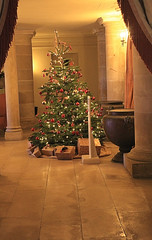 Deck the hall (jpotto) Tags: uk derbyshire kedlestonhall nationaltrust christmas christmastree eastmidlands ambervalley