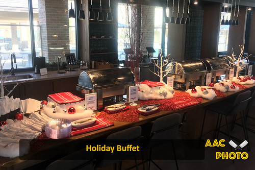 "Holiday Buffet • <a style=""font-size:0.8em;"" href=""http://www.flickr.com/photos/159796538@N03/46520284261/"" target=""_blank"">View on Flickr</a>"