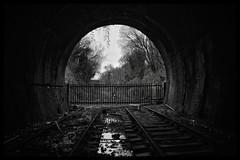 Seeing The Light (Lewis_Hurley) Tags: southstaffordshireline dudleytunnel blackandwhite bw westmidlands birmingham england uk dudley tunnel abandoned