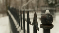 Arrow (ana_kapetan_design) Tags: arrow snow arrows park fence enclosure tree