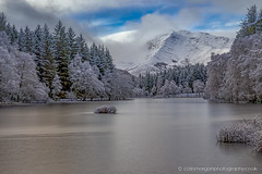 Glencoe Lochan-2638 (Splendid What) Tags: 2019 frozen glencoelochan ice january lake scotland snow trees pinetrees mountains loch winter uk landscape