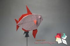 Opah (Rydos) Tags: origami art hanji koreanpaper korean origamist koreanorigamist paperfold fold folding paperfolding designed design model papermodel korea origamilst kamiya satoshi kamiyasatoshi handmadehanji hand made color red blue manta mantaray ray opah paper