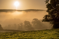 Sun Rising over Hampsfell (Nick Thorne, Bodian Photography) Tags: 2018 backlit bybodianphotography bynickthorne cartmelpeninsula cumbria england fells flickr flora geographicalfeatures grangeoversands hampsfell location photographer rays silhouette sun sunrise themed weather year colour mist tree