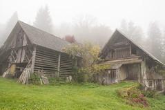Slovenia Storage Barns (daveknight1946) Tags: slovenia barn mist