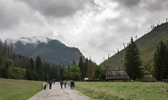 Cloudy day (MACIEJ WOJCIECHOWSKI) Tags: zakopane poland tatry tatras tatra mountains mountain valley people walk walking tourist tourists green trees tree hut cloud cloudy clouds sky skyline grey rainy outside nature natur natural naturaleza naturephotography landscape landschaft