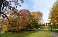 Herbst Impression aus dem Stadtgarten Karlsruhe (KaAuenwasser83) Tags: stadtgarten karlsruhe gartem himmel pflanzen herbst bäume laub bunt gelb orange wege anlagen wetter park