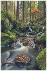 Wyming Brook (Ian Emerson (Thanks for all the comments and faves) Tags: peakdistrict water waterfall rocks moss leaves pines trees autumnal colourful woodland outdoor canon 6d