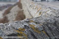 2018-11-17 LRMarazion.021 (Rock On Tom) Tags: longrock marazion cornwall coastpath kernow coast sea waves