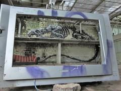 ROA / Mariakerke - 1 dec 2018 (Ferdinand 'Ferre' Feys) Tags: urbex gent ghent gand belgium belgique belgië streetart artdelarue graffitiart graffiti graff urbanart urbanarte arteurbano ferdinandfeys roa
