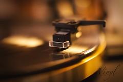 VinylLove (shnyder@) Tags: dual vinyl plattenspieler turntable sony slta65 tamron macro schallplatte 60mm music