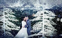 Winter wedding in Seattle. (Rick Takagi) Tags: event seattle enchant safeco field holiday christmas lights wedding elopement engaged engagement pixeloop app snow