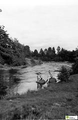 tm_6080 - Knut Dahlgren och Karl Dahlgren (Tidaholms Museum) Tags: svartvit positiv gruppfoto tidan skog vatten bad badbyxor swim throusers