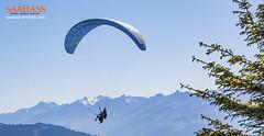 5 Precautions to Encounter a Safe Paragliding Experience (saahaasadventure) Tags: adventureactivity paragliding paraglidingprecautions paraglidingsafetygears