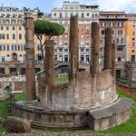 Die Säulen der Largo di Torre Argentina Ruine in Rom thumbnail
