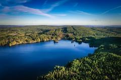 Gimmen (Klas-Herman Lundgren) Tags: dalarna sweden gimmen autumn höst november forest trees lake sjö skog travel blue sverige drone sifferbo se