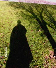 104_0404 w high contrast (dehueso) Tags: selfportrait autorretrato altocontraste highcontrast