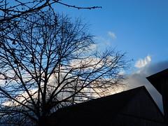 Himmel.... (elisabeth.mcghee) Tags: unterbibrach oberpfalz himmel sky wolken clouds bäume trees äste branches scheune barn dach upper palatinate