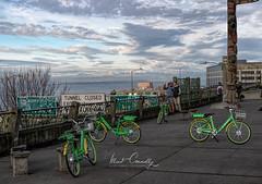 Bell St Bikes (4 Pete Seek) Tags: market pikesmarket publicmarket seattlepublicmarket farmersmarket pikespublicmarket seattle seattlewashington downtown downtownseattle touit1832 touit32mmf18 touit zeisstouit32mmf18 zeisstouit planar3218touit