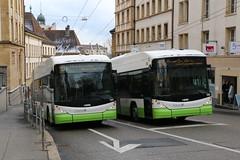 2019-01-29, Neuchâtel, Rue des Terreaux (Fototak) Tags: trolleybus filobus obus hess swisstrolley neuchâtel switzerland transn ligne107 ligne102 141 144