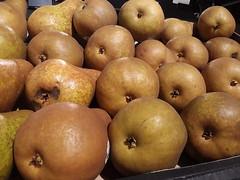 Bosc Pears (splattergraphics) Tags: pears bosc fruit produce