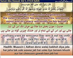 The mu'adhdhin will receive forgiveness to the extent to which his voice reaches, (mnb66229) Tags: narrated abu hurayrah radiallahuanhu the prophet peacebeuponhim said muadhdhin will receive forgiveness extent which his voice reaches every moist dry place testify behalf he who attends congregation of prayer have twentyfive prayers recorded for him expiation sins committed between two times prayersunan dawud vol 1 book 2 0515sahih