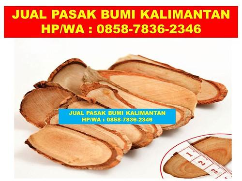 OPEN SALE!!!, WA/Telp 0858-7836-2346, Tongkat Ali Herbal