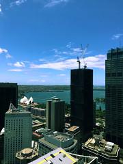 A Beautiful Sydney Day