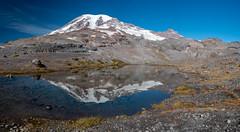 Paradise Glacier Trail (Laura Jacobsen) Tags: mountains mtrainier mtrainiernationalpark washington