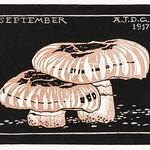 September (1917) by Julie de Graag (1877-1924). Original from The Rijksmuseum . Digitally enhanced by rawpixel. thumbnail