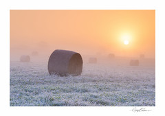 Frosted Bales II (George-Edwards) Tags: landscape frost sunrise morning sun light dawn daybreak autumn winter seasons bales haybales straw crop harvest field meadow corn wheat grass frosty mist fog cloud sky outdoor countryside rural farm trees riverpang vale pangvalley northwessexdowns aonb berkshire england