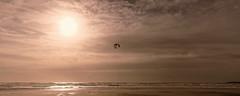 DSC08587_DxO (Jacquod1) Tags: bretagne mer nature nuages paysage plage soleil
