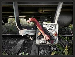 ESTACIONES-ABANDONADAS-TREN-FERROCARILES-RENFE-PIEZAS-VAGONES-MERCANCIAS-ARQUEOLOGIA-HISTORIA-INDUSTRIAL-FOTOS-PINTOR-ERNEST DESCALS (Ernest Descals) Tags: estaciones abandonadas antiguas ancient estacions magatzems almacenes mercancias tren trenes trens ferrocarril ferrocarriles ferrocarrils vagons vagones estructuras hierro numeros arqueologia tiempo historia historicas ferroviarias ferroviarios abandoned paisatge paisatges pictures excusiones excursion manresa barcelona catalunya cataluña catalonia estacio landscaping landscape investigar investigacion investigaciones placa railway railways old history piezas station stations freight mercaderies train central ernestdescals pintar