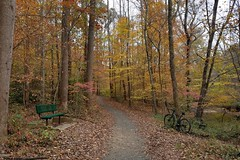 2018 Bike 180: Day 183 - Roundtree Park (mcfeelion) Tags: bike bicycle fallschurchva holmesrun cycling holmesruntrail autumn bike180 2018bike180