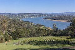 320A0696 River Tamar (Leeds Lad at heart) Tags: river water tamar tasmania landscape winery forest mountain