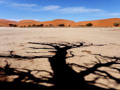 P1107744-LR (carlo) Tags: namibia panasonic dmcg9 g9 africa desert deserto landscape africanlandscape sossusvlei