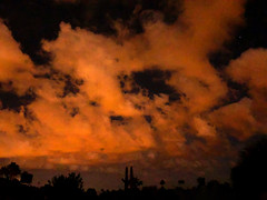 Always Take Your iPhone (oybay©) Tags: cactus cacti sunset monsoon clouds silhouette enmasse arizona vistancia sun summer 2007 color colors orange cloudy humid landscape