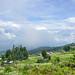 Kinigi, Ruanda