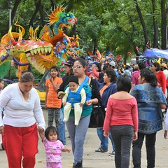Parade of the Alebrijes 24 October 2015 (9) (Carl Campbell) Tags: mexicocity ciudaddeméxico parade desfile alebrije