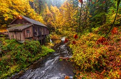 Autumn at the mill (Cole Chase Photography) Tags: washington mill october fallcolor cedarcreek autumn pacificnorthwest