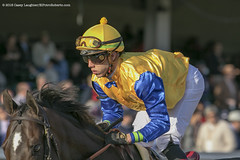 Irad Ortiz (Casey Lynn Photos) Tags: 2018copyright breederscup churchilldowns churchill kentucky louisville canon canon7dmii canonphotography canonusa canonlens action actionphotography sports sportsphotography