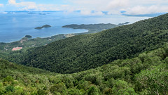 A valley towards the sea (calvinyjj) Tags: water sea ocean waves jungle green blue coral boat beach tree animal nature hill panaroma white sand sandy shallow malaysia sabah semporna forest landscape mountain grass train sky reef bay house window tropical coconut underwater basketball roof road park wood shore building people architecture