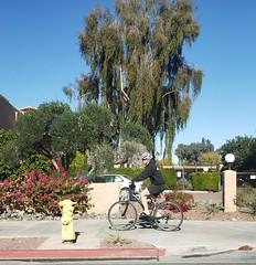 December 30, 2018 (1) (gaymay) Tags: california desert gay love palmsprings riversidecounty coachellavalley sonorandesert shopping bike bicycle riding outside