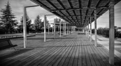 Pergola (Lea Ruiz Donoso) Tags: bn bw blancoynegro sony pérgola trees árboles geometric lineas lines monochrome monocromático monocromo cityscape paisajeurbano architecture arquitectura